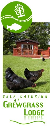Grewgrass Lodge self catering holiday lodges